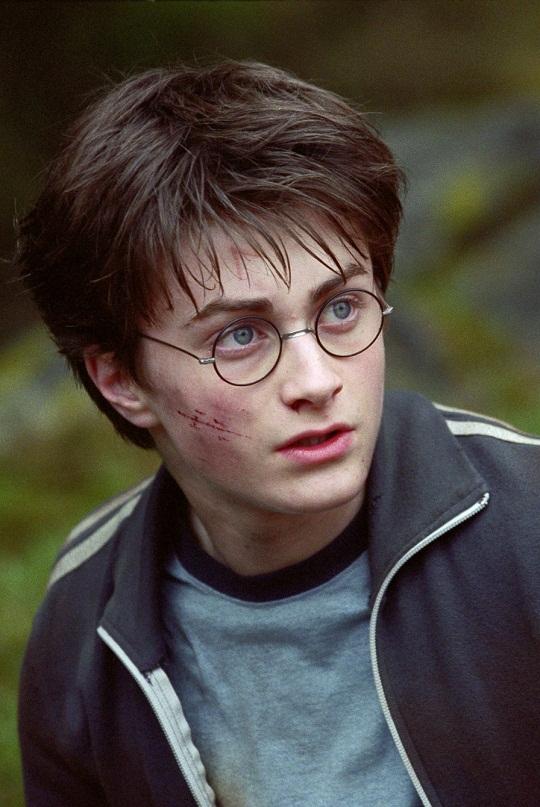 Harry Potter Protagonist