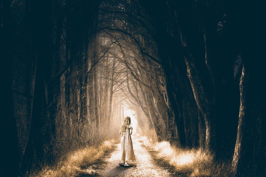 forest, spooky, dark-3737107.jpg