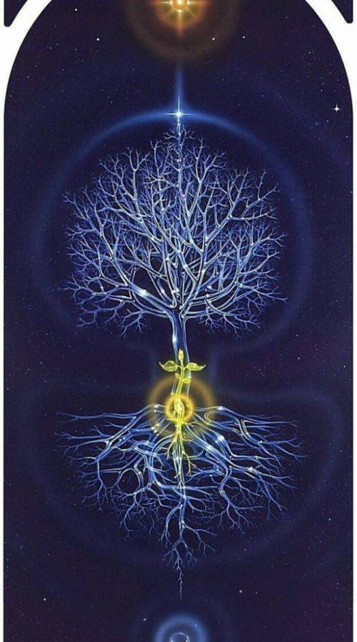 Celestial_tree_life-1555c4c7-a4ca-4530-83fc-b8e7e6dbc91d